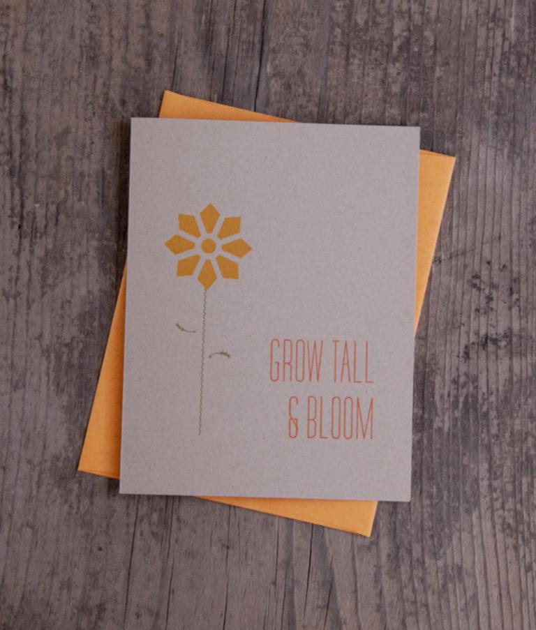 ILP_0014_edit_grow